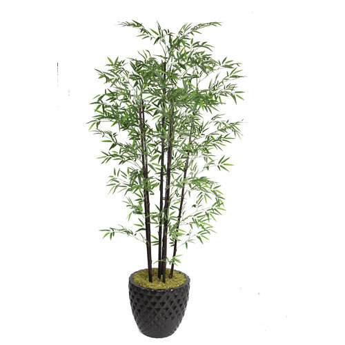 Laura Ashley VHX106205 78-Inch Black Bamboo Tree in 16-Inch Fiber Stone Planter