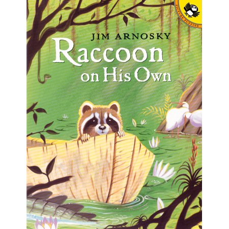 Raccoon on His Own (Paperback)