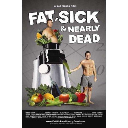 Fat Sick & Nearly Dead Movie Poster (11 x 17)