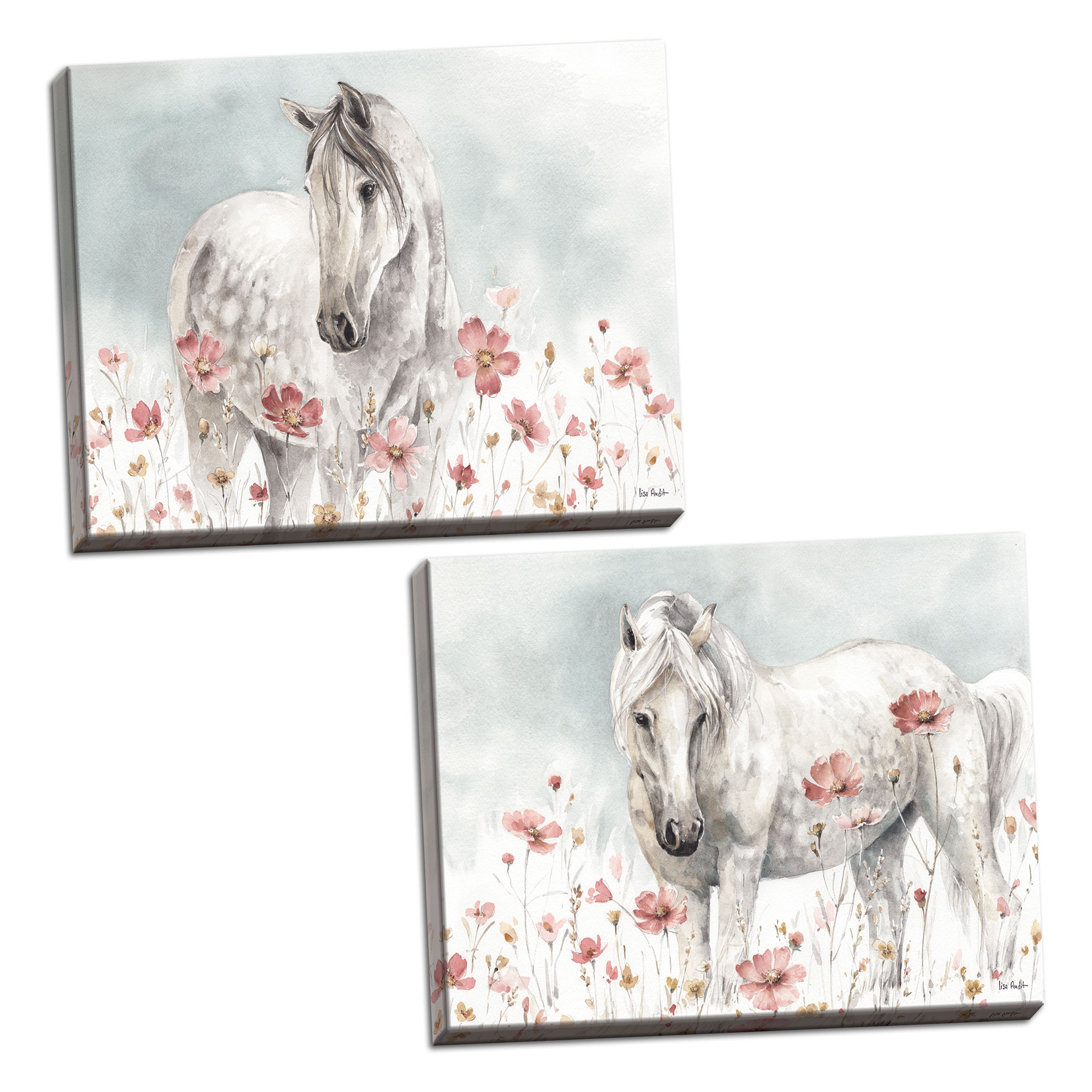 Gango Home Decor Shabby-Chic Wild Horses I & II by Lisa Audit (Ready to Hang); Two 24x16in Hand-Stretched Canvases