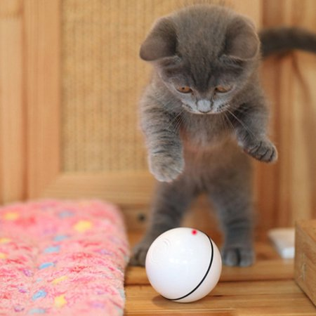 VENSE Interactive Cat Toys with Usb Rechargeable Toys with Rolling Balls Laser - image 9 of 10