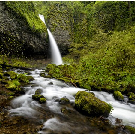 Waterfall 12' Lip (Waterfall in a forest Horsetail Falls Columbia Gorge National Scenic Area Oregon USA Stretched Canvas - Panoramic Images (12 x 12))