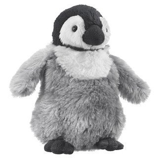 Emperor Penguin Chick 6