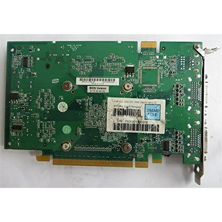 evga 256 P2 N550 B1 256MB PCI-E x16 DVI-I HDTV Video Card EVGA 256P2N550T2 256-P2-N550-T2 (256 Video)