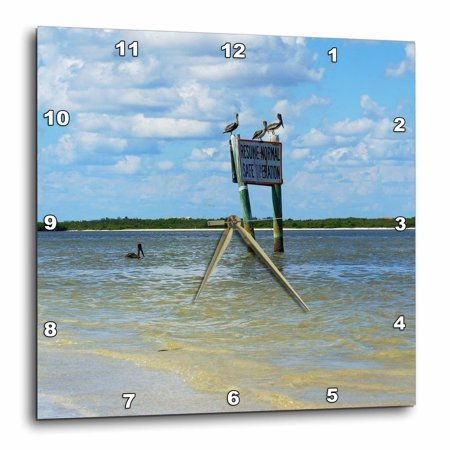 3dRose Pelicans On Sign, Wall Clock, 15 by (Sign Wall Clock)