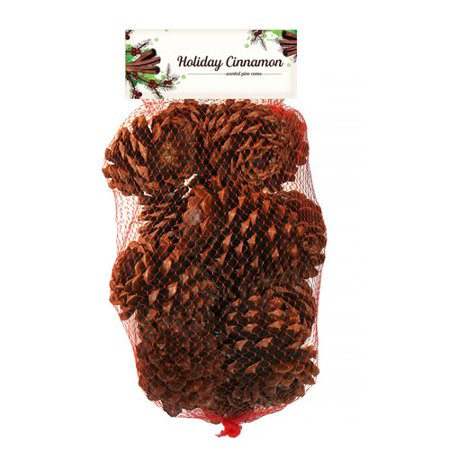 The Holiday Aisle Holiday Cinnamon Scented Pine Cones