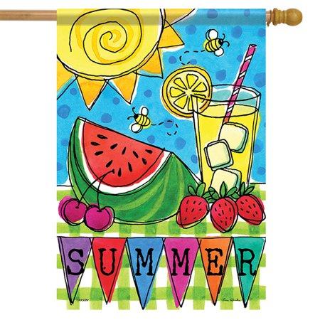 Left Side Banner - Summer Picnic House Flag Sun Watermelon Double Sided Yard Banner 28