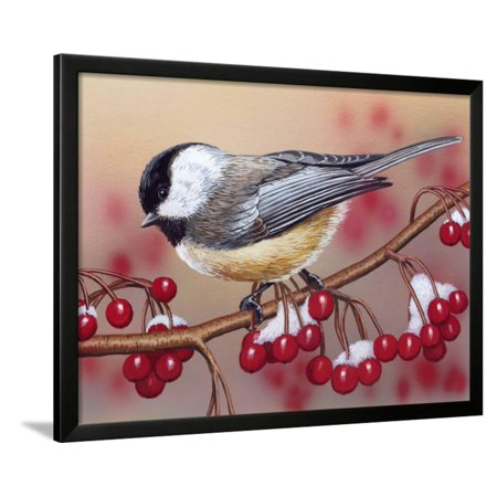 - Chickadee with Berries Framed Print Wall Art By William Vanderdasson