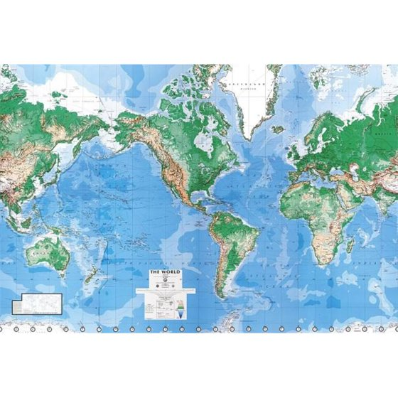 Environmental graphics c900 executive world map wall mural for Executive world map wall mural