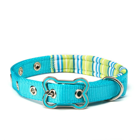 Vibrant Life Teal Striped Comfort Padded Dog Collar, Small, 8-14 in, 3/8 in ()