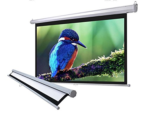 "119"" Manual Pull Down Projector Projection Screen Home Theater Movie 84""x84"" MS by"