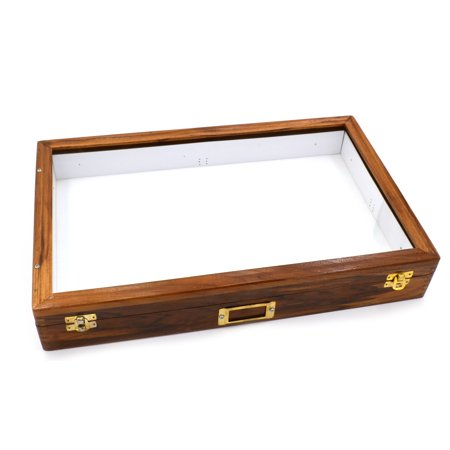 Insect Storage Box - Polished Wood- Eisco Labs