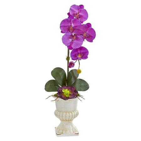 Orchid and Succulent Artificial Arrangement in Purple ()