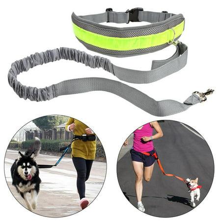 Hands Free Elastic Dog Leash Reflective Waist Belt With Bottle Holder Waist Bags for Running Walking Hiking