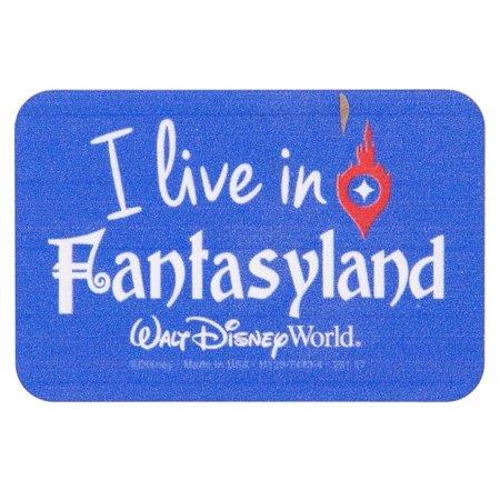 Disney Parks Walt Disney World I Live in Fantasyland Metal Magnet New