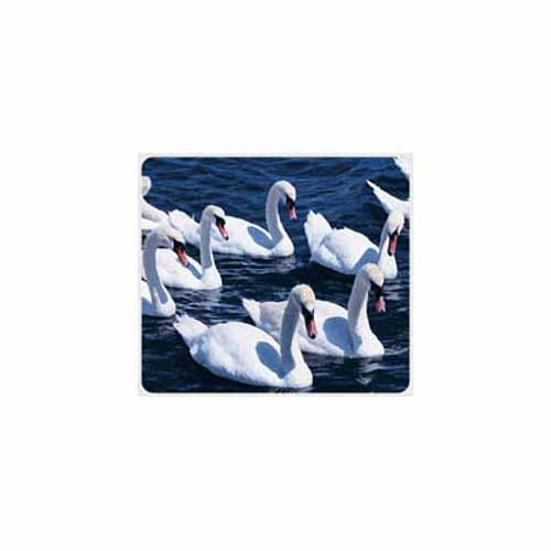 Swan Mouse Pad - MA13198