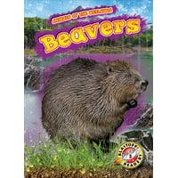 Animals of the Wetlands: Beavers (Hardcover)