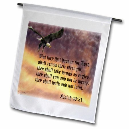 Rise Against Flag - 3dRose Isaiah 40-31 Bible verse with eagle against a troubled sky, Garden Flag, 18 by 27-Inch