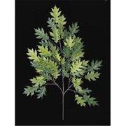 Autograph Foliages PR-4691 - 29 Inch Fire Retardant Pin Oak Branch - Two-Tone Green - Dozen