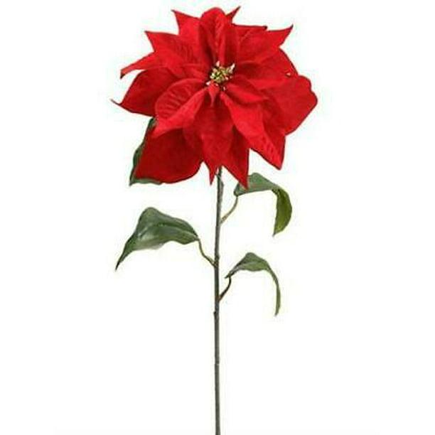 1pk Velvet Poinsettia Christmas Flower In Red 7 Bloom Walmart Com Walmart Com