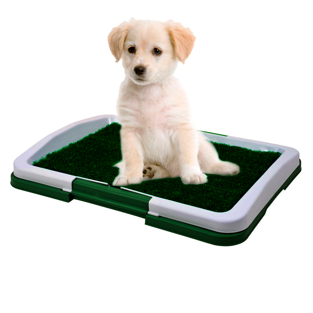 Dog Puppy Indoor Potty Pad Rug Trainning Grass Patch Toilet Mat Tray System