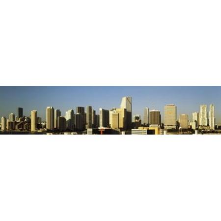 Buildings in a city Miami Florida USA 2012 Poster Print](Party City In Miami Gardens)