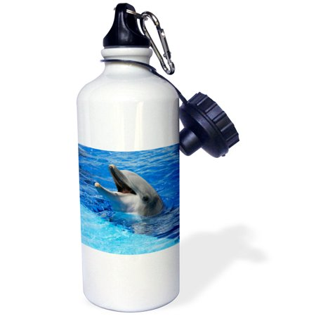 3dRose Dolphin with its mouth open at Oceanographic Aquarium in Valencia, Spain, Sports Water Bottle, 21oz