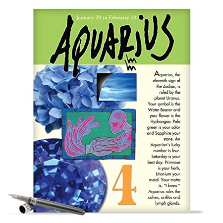 J9440 Jumbo Humorous Birthday Greeting Card Aquarius With Envelope Big Size 85 X 11
