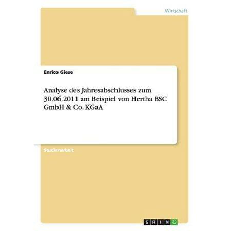 Analyse Des Jahresabschlusses Zum 30.06.2011 Am Beispiel Von Hertha BSC Gmbh & Co. Kgaa