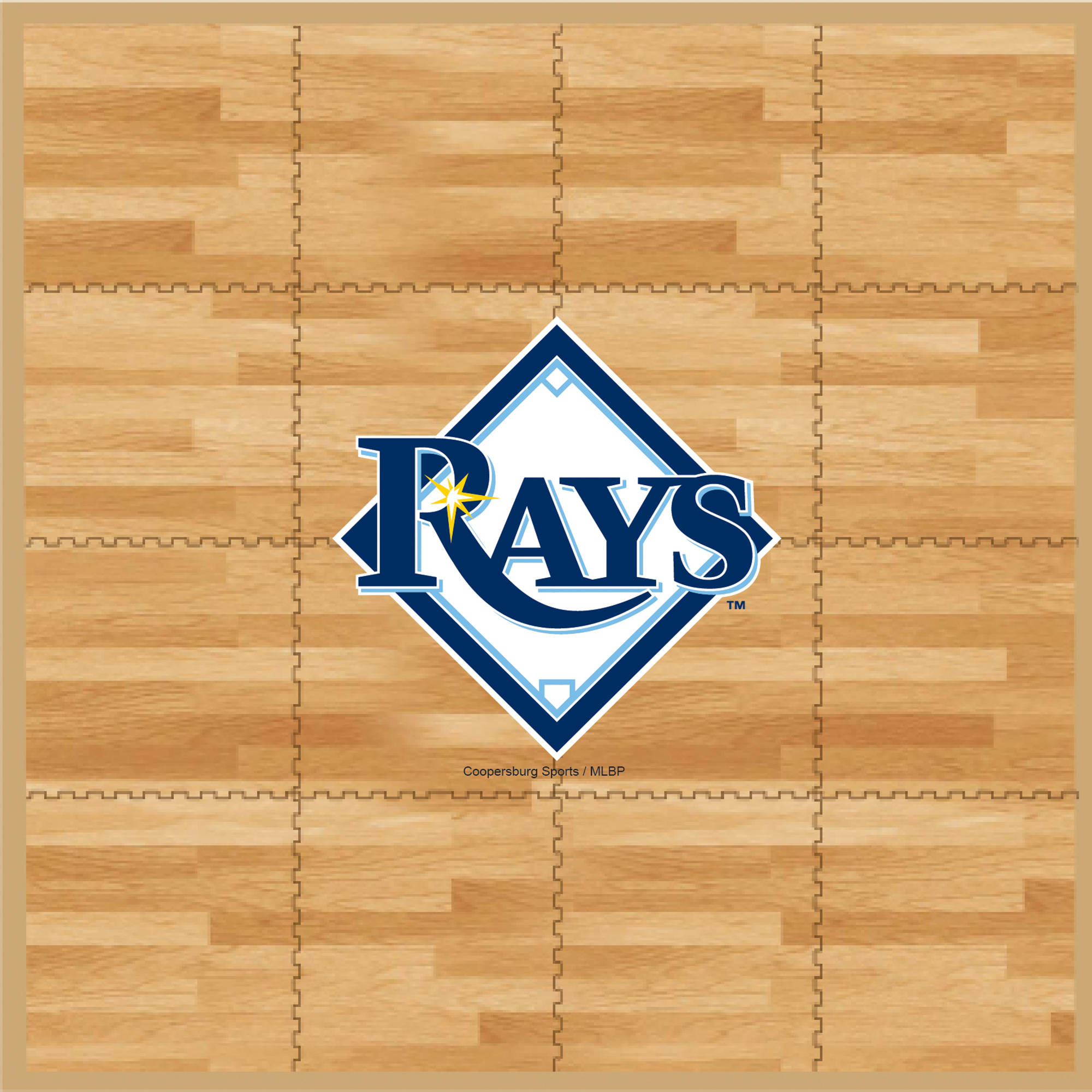 MLB Tampa Bay Rays Portable Foam Puzzle Tailgate Floor Mat by