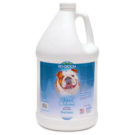 Biogroom Oatmeal Shampoo - Bio-Groom Natural Oatmeal Anti-Itch Shampoo - Natural Oatmeal Anti-Itch Shampoo, gallon