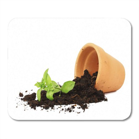 SIDONKU Broken Flower Pot Spilled Out Soil Damage Plant Spill Fallen Messy Mousepad Mouse Pad Mouse Mat 9x10 inch ()