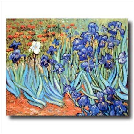 Van Gogh Flower Les Irises Wall Picture Art Print