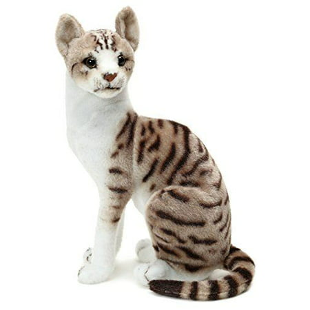 Cat In The Hat Stuffed Animal (Amy the American Shorthair Cat | 14 Inch Stuffed Animal Plush | By Tiger Tale)