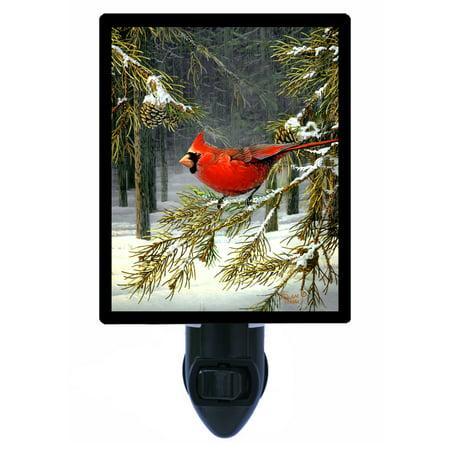 Cardinal Bird Habitat (Night Light - Photo Light - Woodland Cardinal - Red Bird )