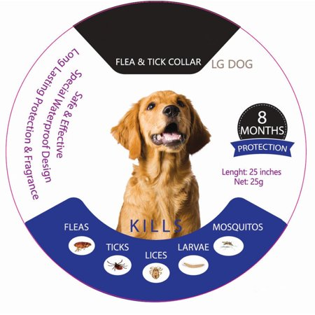 SUNZEO Flea&Tick Prevention Collar - for Dogs & Puppies - Length-25