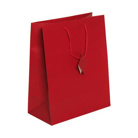 Red Gift Bags (JAM Paper Gift Bag, Large, 10