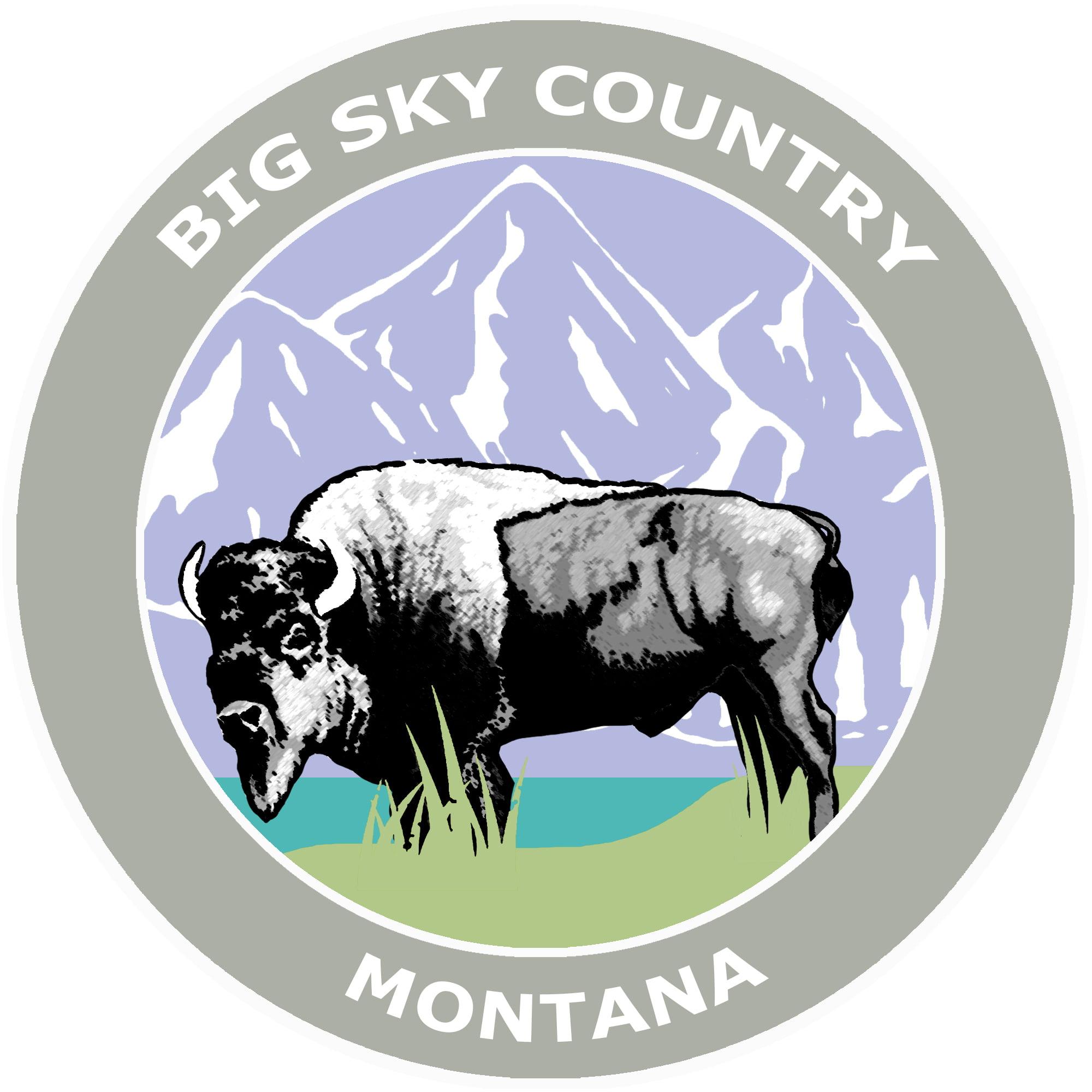 53-2 1 RV Trailer Camper Montana Big Sky Graphic Decal