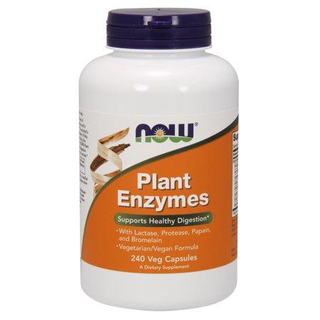 NOW aliments végétaux Enzymes santé Digestion soutien, 240 Ct
