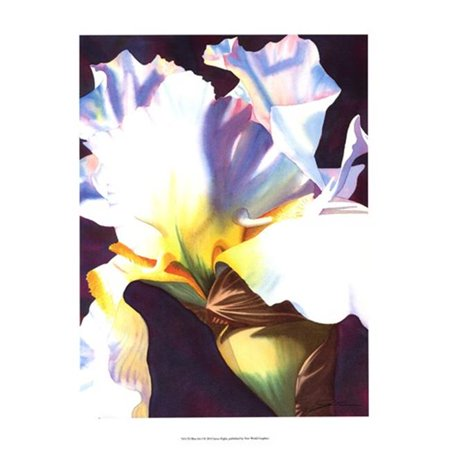 Old World Prints OWP76517D Blue Iris I Poster Print by Jason Higby -13 x 19 - image 1 of 1