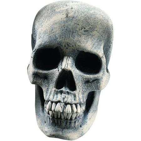 Human Skeleton Skull Head Prop Halloween Decor - Best Halloween Decor Pinterest