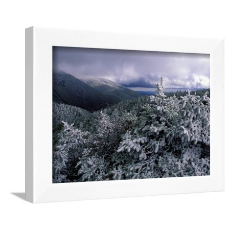 Snow Coats the Boreal Forest on Mt. Lafayette, White Mountains, New Hampshire, USA Framed Print Wall Art By Jerry & Marcy - Lafayette Coat