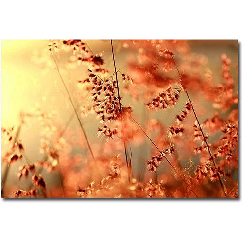 """Trademark Fine Art """"Sunset Conversations"""" Canvas Art by Beata Czyzowska Young"""