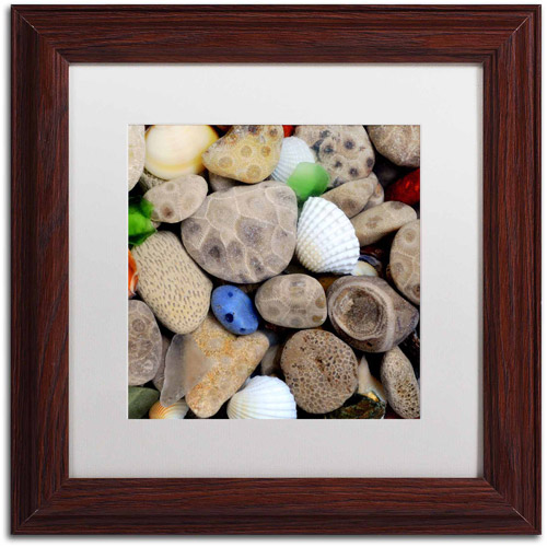 "Trademark Fine Art ""PetoskeyStones V"" Canvas Art by Michelle Calkins, White Matte, Wood Frame"