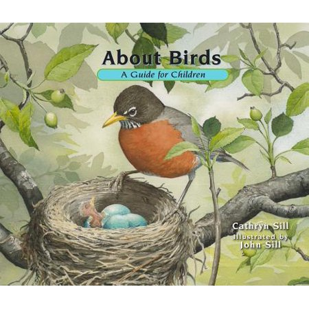 About Birds : A Guide for - History About Halloween For Kids
