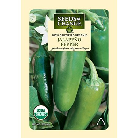 Seeds of Change Certified Organic Pepper, Jalapeno - 200 milligrams, 25 Seeds Pack