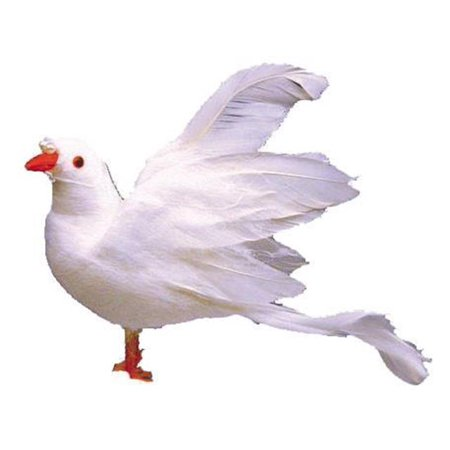 """AD Fthr Flying Dove w/Wings Up 4"""" White 1pc"""