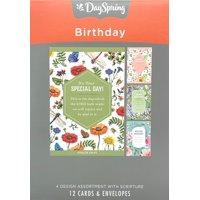 Birthday - Inspirational Boxed Cards - Bug Theme