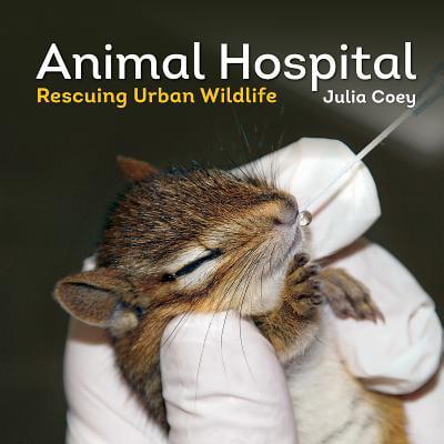Life Urban Envelope - Animal Hospital : Rescuing Urban Wildlife