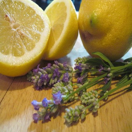 Lavender Lemon Fragrance Oil - 1 OZ - For Candle and Soap Making by Virginia Candle Supply - Free S&H in (Soap Making Supplies)